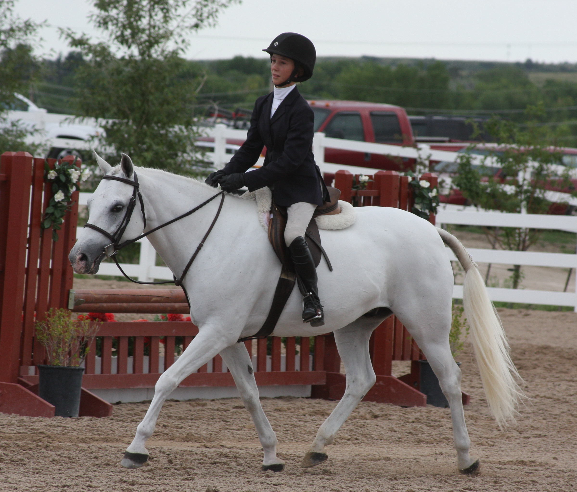 Helicon Show Stables
